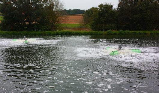 Einsatz in Teichen mit geringer Wassertiefe